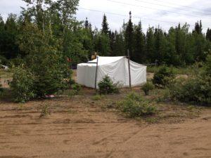 Labrador tent near Shesh